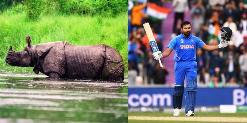 "Rohit Sharma to launch ""Rohit4Rhino"" campaign"